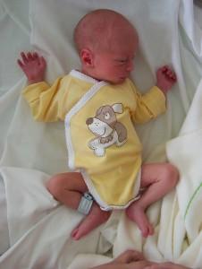 Un body naissance sur une crevette de 1kg900, c'est un peu grand :-)