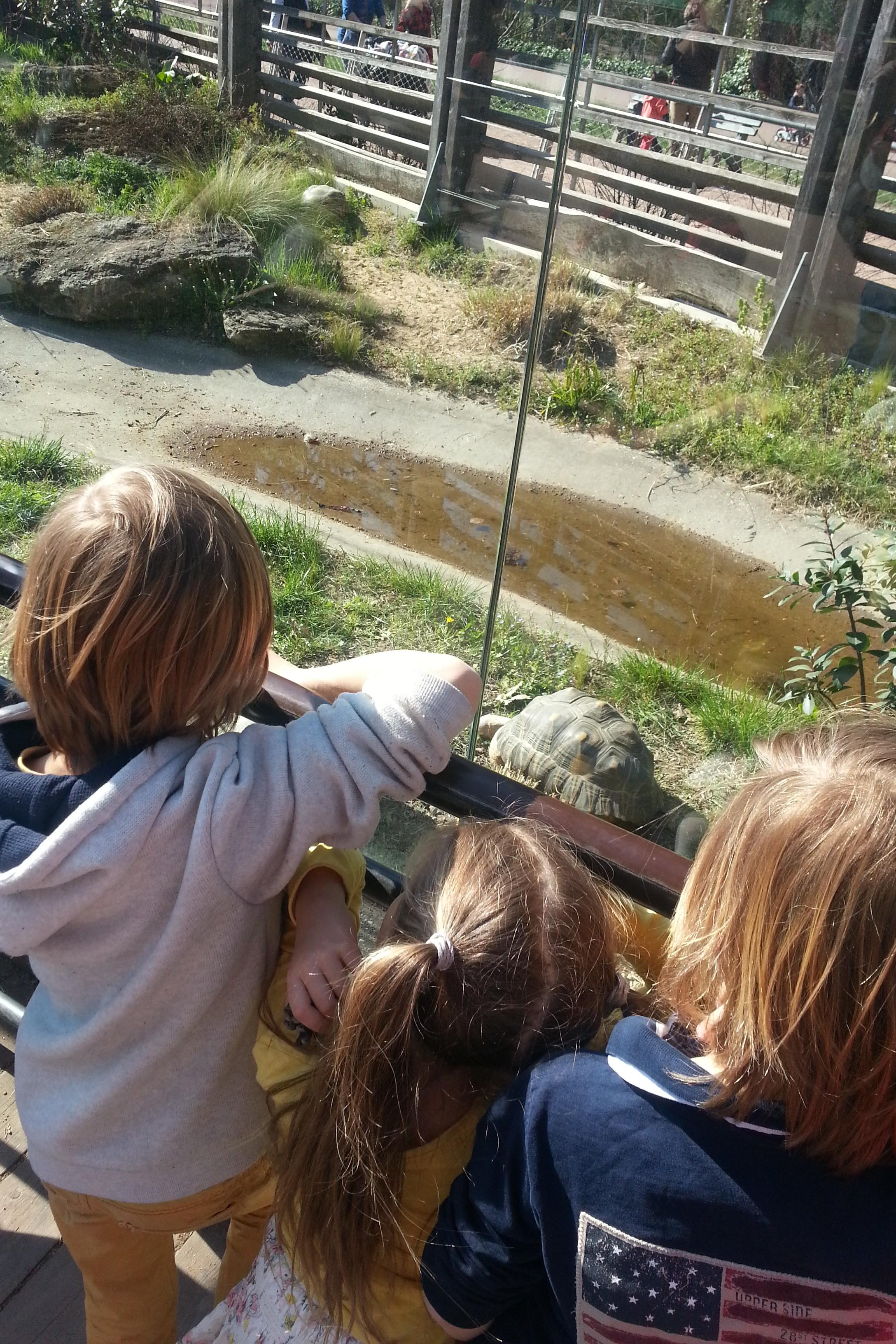 Découvrir Lyon avec les enfants – Parc de la Tête d'Or