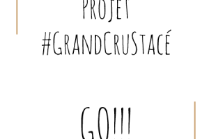 Projet GrandCruStacé-Go